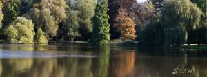 Dowesee in Braunschweig -3